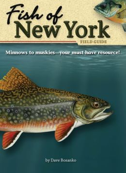 Fish of New York Field Guide