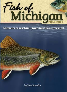 Fish of Michigan: Field Guide
