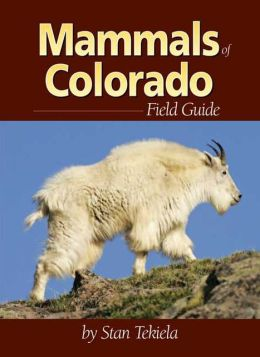 Mammals of Colorado Field Guide