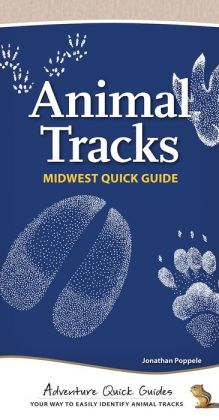 Animal Tracks of the Midwest Quick Guide