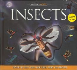 Learning in Action: Insects