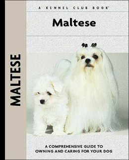 Maltese (Kennel Club Dog Breed Series)