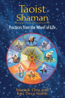 Taoist Shaman: Practices from the Wheel of Life