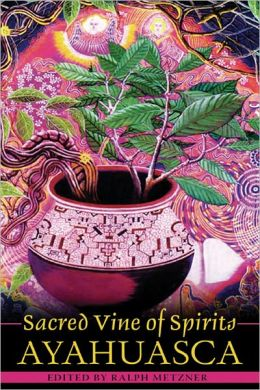 Sacred Vine of the Spirits: Ayahuasca