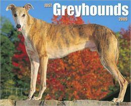 Just Greyhounds