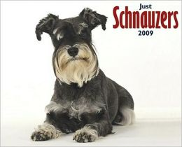 2009 Schnauzers (Just) Wall Calendar