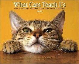 2009 What Cats Teach Us Wall Calendar