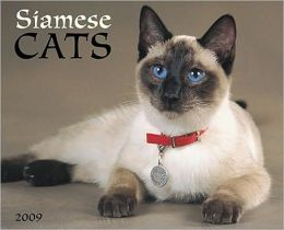 2009 Siamese Cats (Just) Wall Calendar