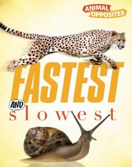 Fastest and Slowest