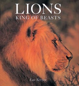 Lions: King Of Beasts