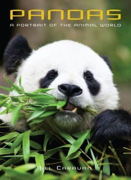 Pandas: A Portrait Of The Animal World