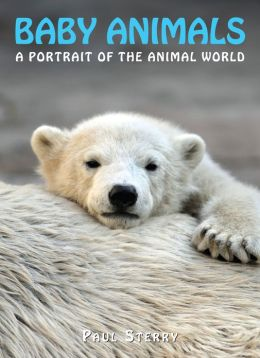 Baby Animals: A Portrait Of The Animal World