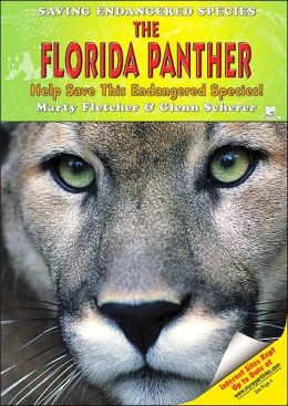 Florida Panther: Help Save This Endangered Species!