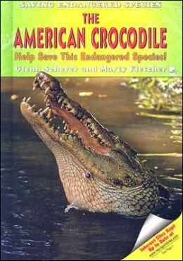 American Crocodile: Help Save This Endangered Species!