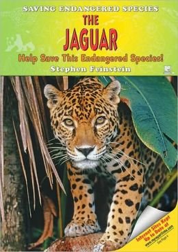 The Jaguar: Help Save This Endangered Species!