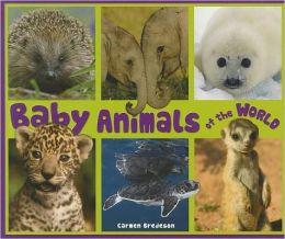 Baby Animals of the World