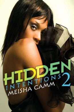 Hidden Intentions 2