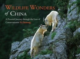 Wildlife Wonders of China: A Pictorial Journey through the Lens of Conservationist Xi Zhinong