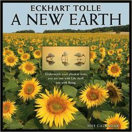 2013 New Earth Wall Calendar