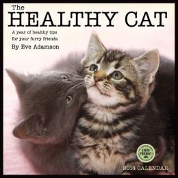 2014 Healthy Cat Wall Calendar