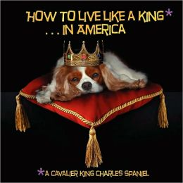 How to Live like a King. in America