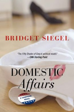 Domestic Affairs: A Campaign Novel