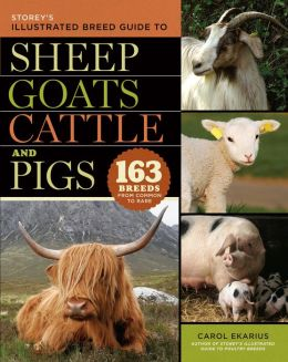 Storey's Illustrated Breed Guide to Sheep, Goats, Cattle and Pigs: 163 Breeds from Common to Rare
