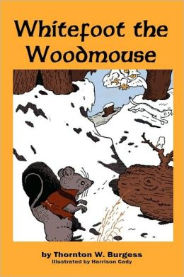 Whitefoot The Woodmouse