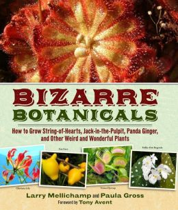 Bizarre Botanicals: How to Grow String-of-Hearts, Jack-in-the-Pulpit, Panda Ginger, and Other Weird and Wonderful Plants