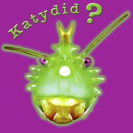 Katydid? Katy Didn't!