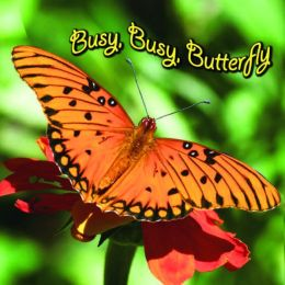 Busy, Busy Butterfly