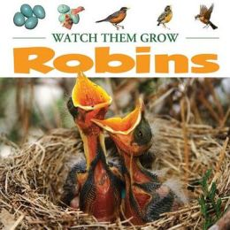 Robins: Watch Them Grow