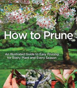 How to Prune: An Illustrated Guide to Easy Pruning for Every Plant and Every Season