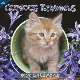 2012 Curious Kittens Wall Calendar