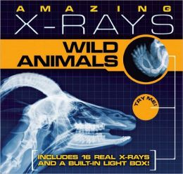 Amazing X-rays: Wild Animals