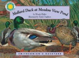 Mallard Duck at Meadow View Pond (Smithsonian's Backyard Series)