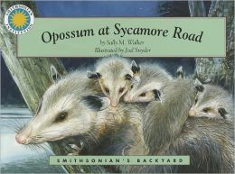 Opossum at Sycamore Road (Smithsonian's Backyard Series)