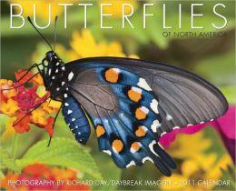 2011 Butterflies Wall Calendar