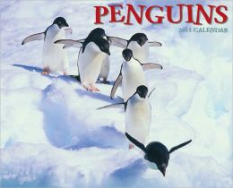 2011 Penguins Wall Calendar
