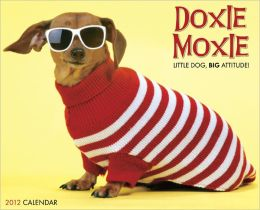 2012 Doxie Moxie Wall Calendar