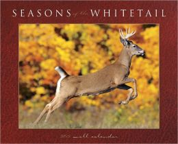 2012 Seasons of the Whitetail Wall Calendar