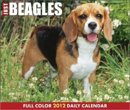 2012 Just Beagles Daily Box Calendar