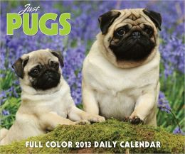 2013 Just Pugs Box Calendar