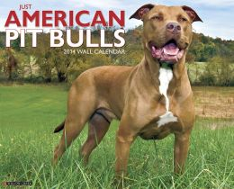 2014 American Pit Bull Terriers Wall Calendar
