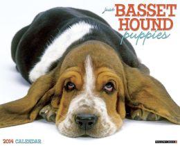 2014 Basset Hound Puppies Wall Calendar