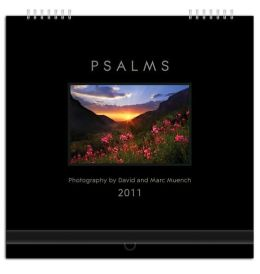 2011 Psalms Gallery Series Wall Calendar