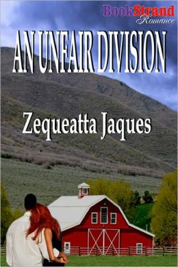 An Unfair Division (BookStrand Publishing Romance)