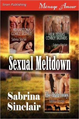 Sexual Meltdown [Her Arizona Cowboy Brothers