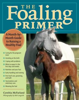 The Foaling Primer: A Step-by-Step Guide to Raising a Healthy Foal