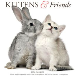 2014 Kittens & Friends Wall Calendar